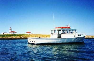 boat[1]