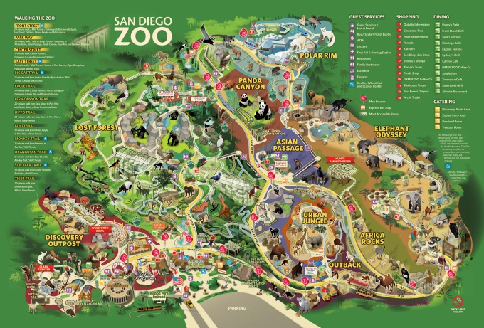 California Dreaming Part III – The San Diego Zoo – The