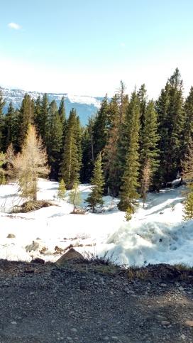 Bethel Ridge Snow