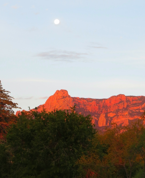 Moon over the Chiricahuas