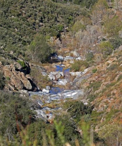 Black Canyon Road Creek