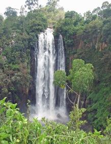 107 Thompson Falls 1