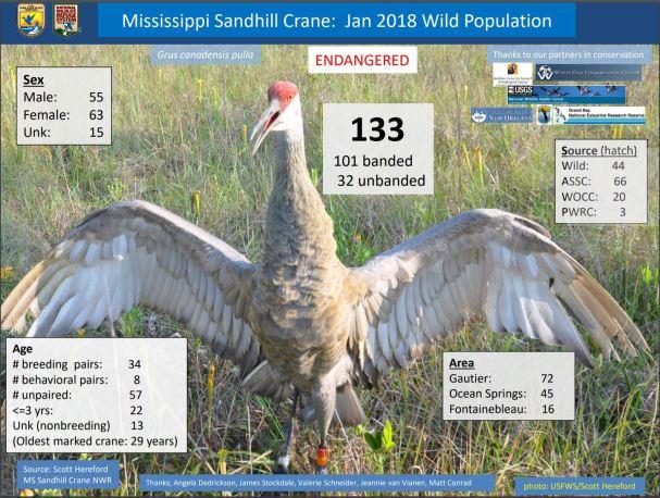 Crane Population