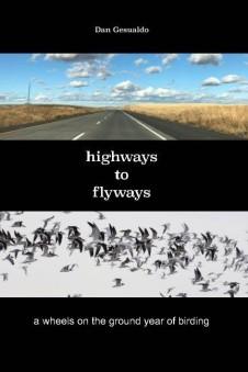 Highways to Flyways